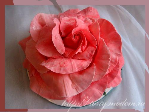 Еврейский торт гуцульские узоры торт